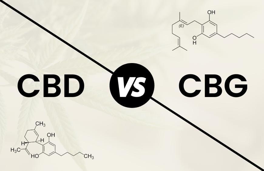 Quelles sont les différences entre le CBD et le CBG ?
