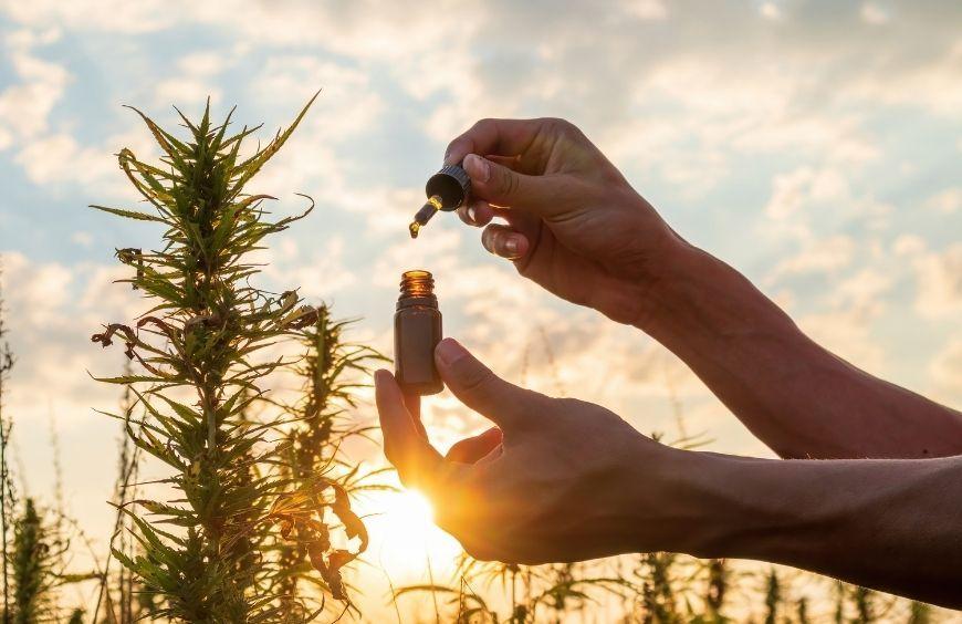 Comment utiliser et Conserver l'huile de cbd ?
